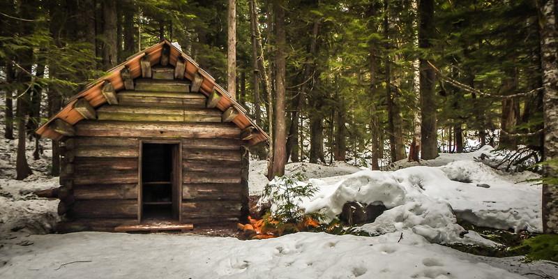 Log Cabin at Longmire Mt Rainier