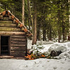 Log Cabin at Longmire Mt Rainier