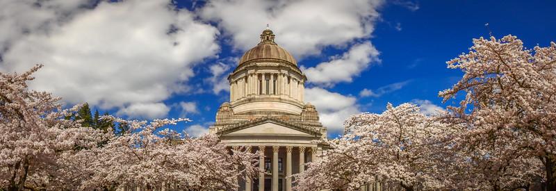 Panoramic State Capitol
