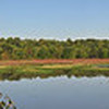 Huntley Meadows, northern Virginia, panorama taken with D700 and Nikkor 28-70mm