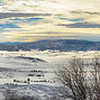 Yampa River Valley, Steamboat Springs, CO