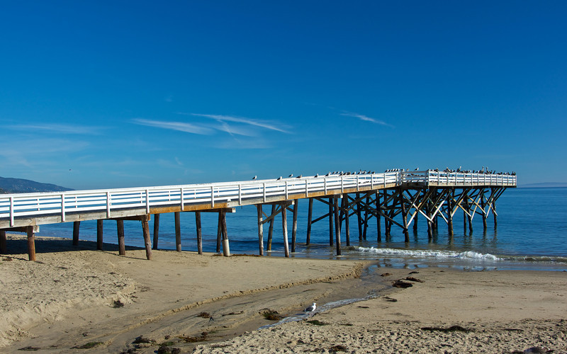 A flock of seagulls commands their perch at the end of a long white pier.