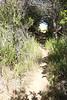Spanish Trail headed east