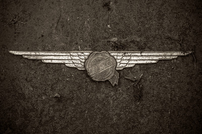 Air Force 29