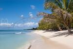 Soana Island, DR <br /> <br /> Beautiful White Sand Beach