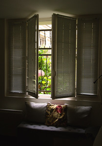 Martinn's Window