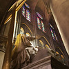 Heavenly Light, Notre Dame