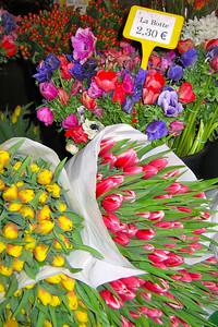 Paris Flower #6