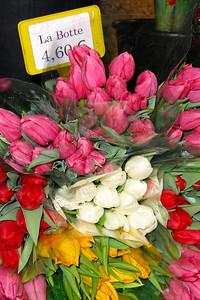 Paris Flower #12