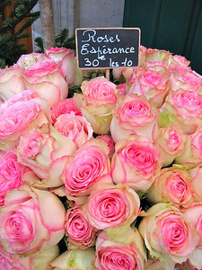 Paris Flower #1