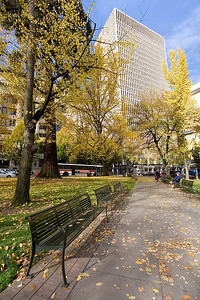 Portland Autumn 5 (88819589)