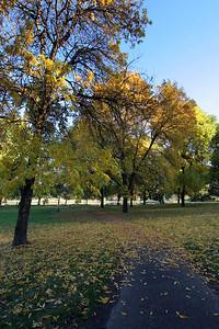 Trojan Park Fall Colors_6736 (87186521)