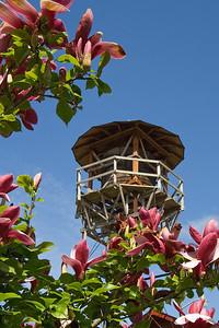 Hulda Klager Lilac Gardens   | Sigma 18-50mm f/2.8 EX DC