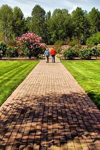 Garden Path   | Sigma 18-50mm f/2.8 EX DC