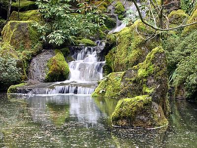 Japanese Garden 6 (41237935)