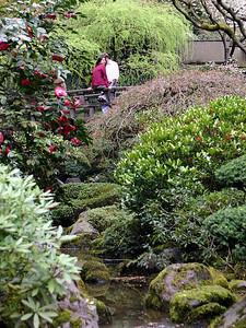Japanese Garden 9 (41237938)