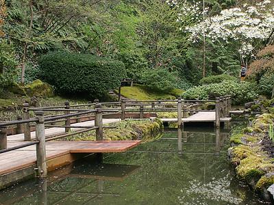 Japanese Garden 7 (41237936)