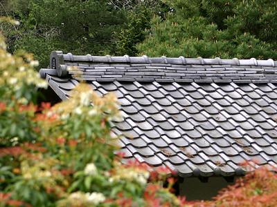 Japanese Garden 14 (41237930)
