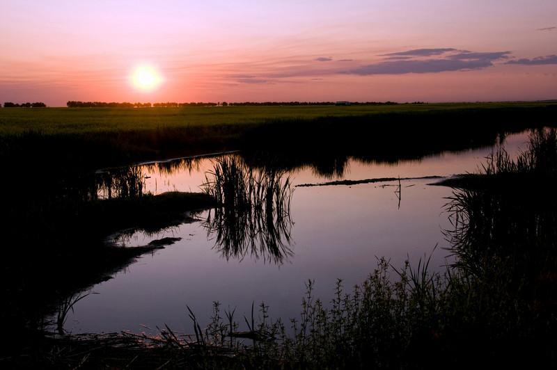 Viterra road Pond, highway 22
