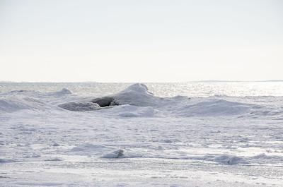 Ice Volcano at Presqu'ile Provincial Park