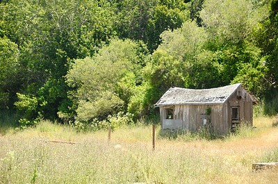 Hows this for a fixer upper out in the country.