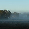 """Hush"" <br /> <br /> <br /> First frost October 2008, Gordon Hall - east field, Dexter, MI"
