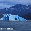 patagonia- iceberg in a lake( Lago Grey)