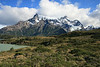 Torres del Paine National Park, Chile. 2009. Trail to viewpoint.