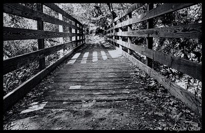 Bridges and Pathways