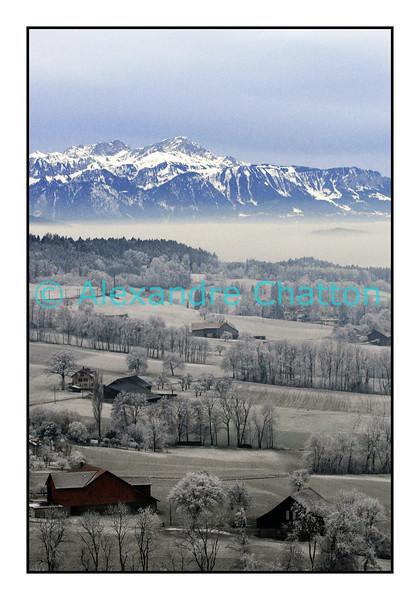 Décembre 2007. Campagne fribourgeoise avec lac Léman sous le brouillard et Préalpes françaises en arrière-plan.