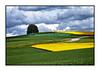 Dimanche 6 mai 2012: paysages entre la glâne fribourgeoise et la Broye