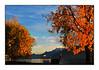 L'automne sur le lac Léman et les Alpes françaises (mais vues de Suisse).
