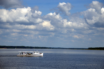 Tangier Lady on the Choptank