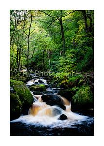 Padley Gorge in the autumn