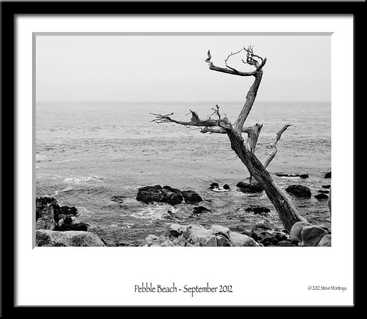 Pebble Beach - Sept 2012