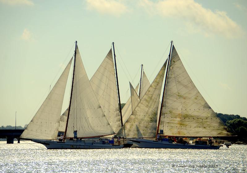 Four Skipjacks