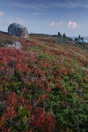 Peggy's Cove Restoration Area was beautiful in the late afternoon sun.