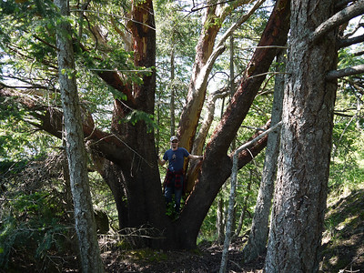 2012 William Walker trail