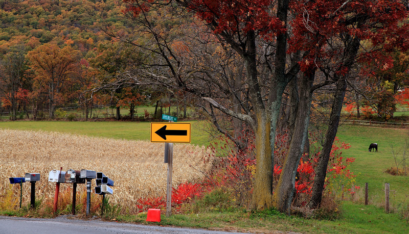 October bend in the road, Brush Valley Road, Linden Hall, PA