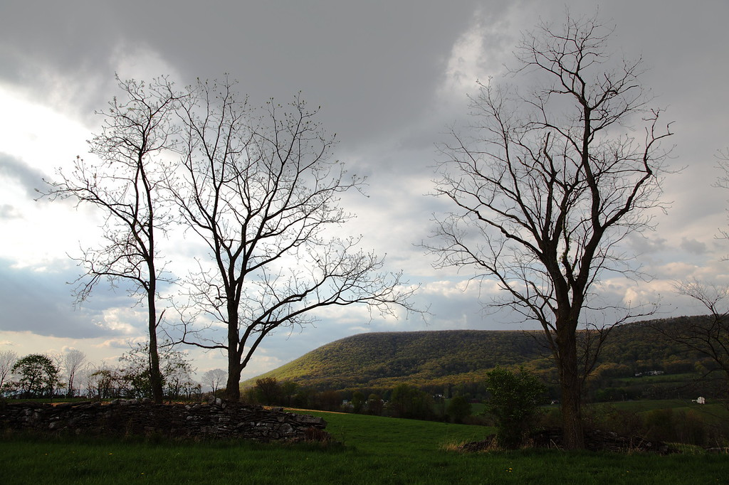 View of Mt. Nittany through and old stone wall, near Oak Hall, PA