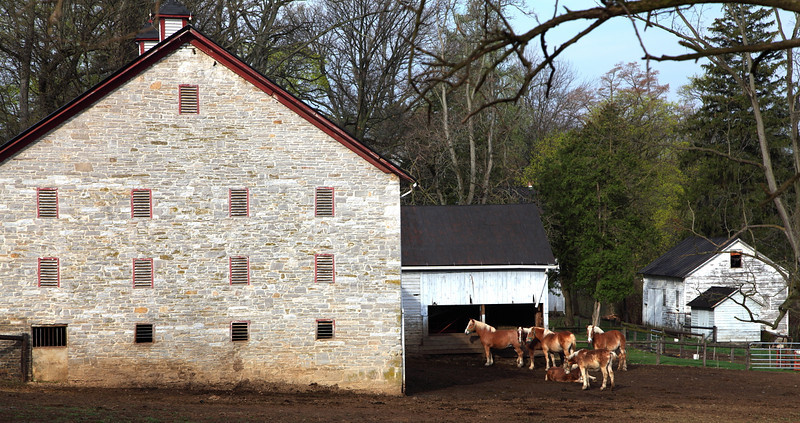 Oak Hall Farm (est. 1822), Oak Hall, PA. Breeders of champion Belgian horses and dairy goats.