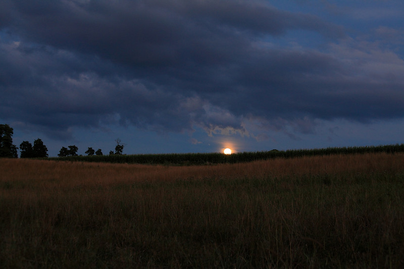 Moonrise over corn, Linden Hall, PA