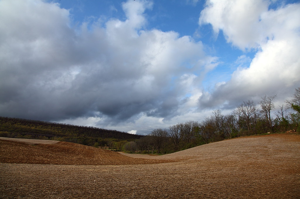 Curvy corner of fields on the south side of Mt. Nittany, Linden Hall, PA