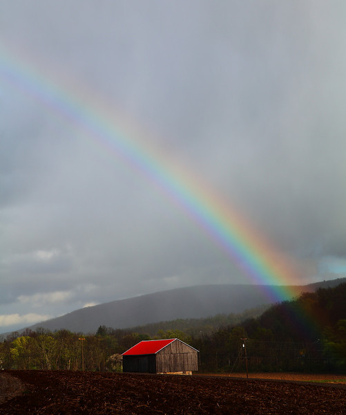 Late afternoon rainbow over a red roof barn after an early spring thunderstorm, Linden Hall, PA.