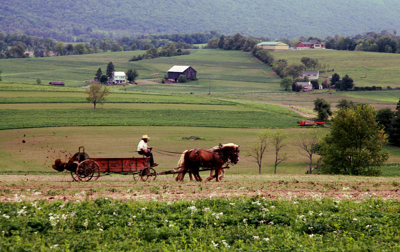 Spreading the spring manure, Woodward, PA.