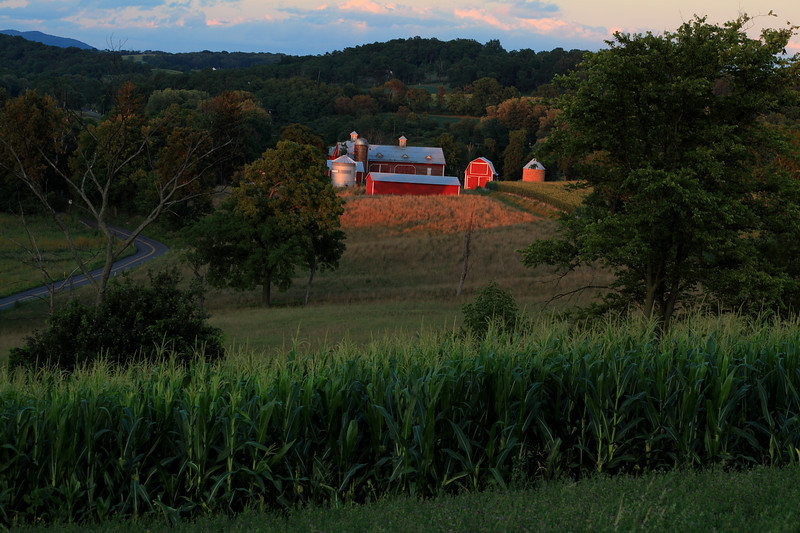 Last light falling on Meyers farm, Linden Hall, PA.  On that night, Jim Everhart and Dave Wagner were chasing after me on their ATV's, as apparently I was trespassing on their land.  I managed to aviod them, but when returning to my car after dark, there was Dave waiting for me in his pickup truck.  I managed to talk my way out of a jam and eventually, to set things right, gave them a book of photos taken from their land and nearby sites.  I now have permission to park at their farm and hike on this hillside to take photos.  Such an interesting way to make new friends!