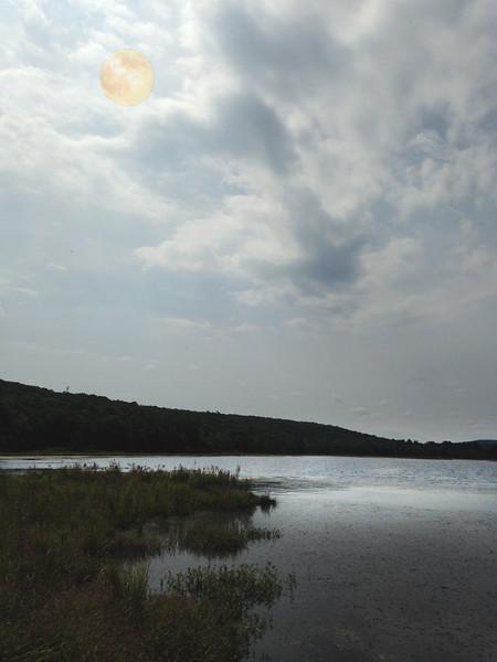 Shohola Marsh