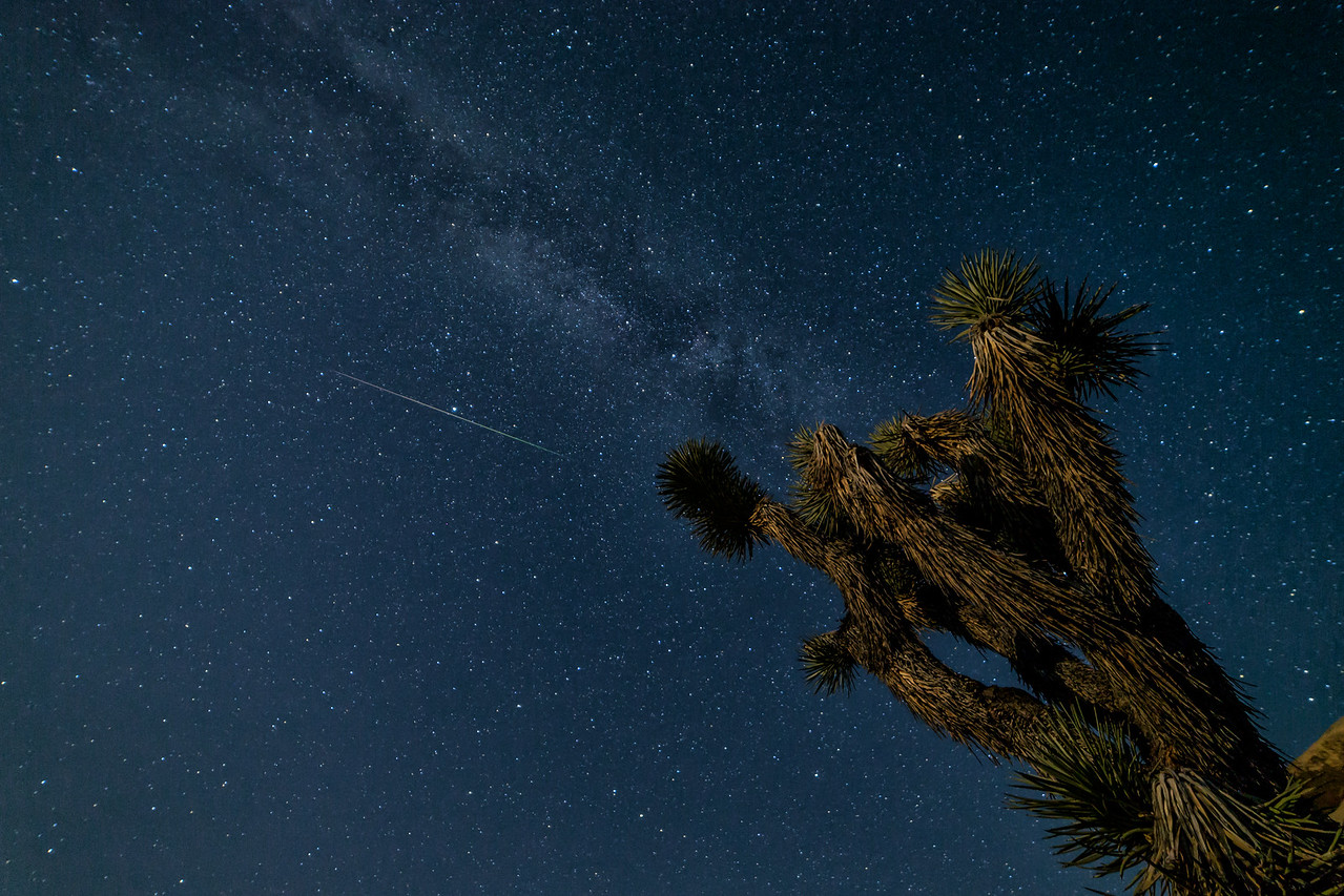 IMAGE: https://photos.smugmug.com/Landscapes/Perseid-Meteor-Shower-at-Joshua/i-6zfHtPV/0/X2/BPDX4978-Edit-X2.jpg