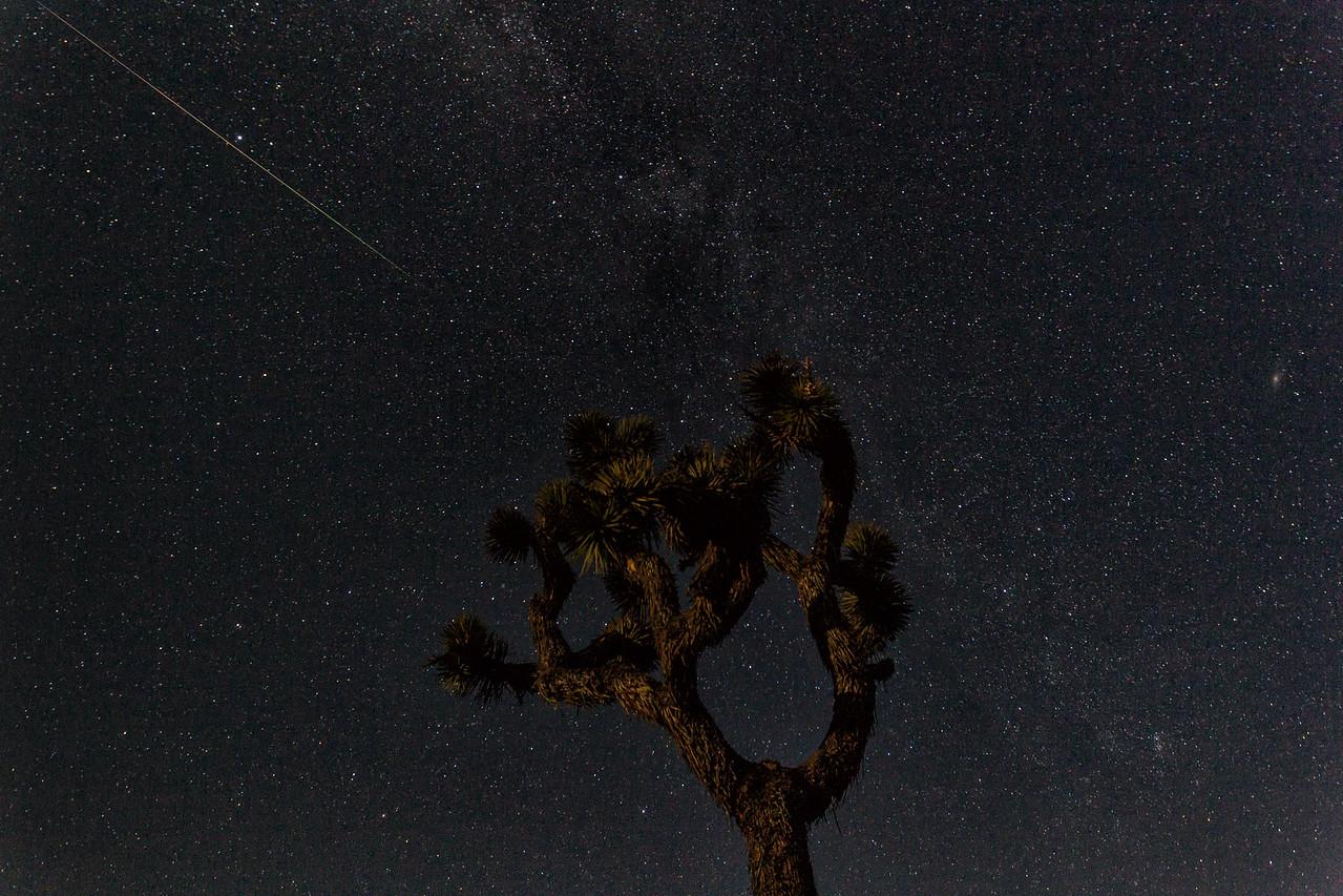 IMAGE: https://photos.smugmug.com/Landscapes/Perseid-Meteor-Shower-at-Joshua/i-gJtKJTX/0/X2/BPD44860-Edit-X2.jpg