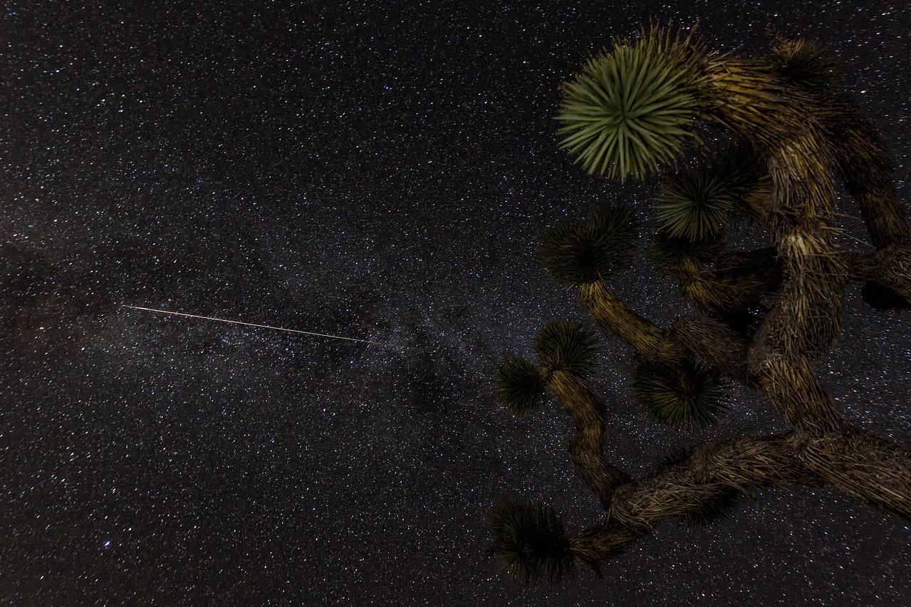 IMAGE: https://photos.smugmug.com/Landscapes/Perseid-Meteor-Shower-at-Joshua/i-wrwMTNv/0/X2/BPD45087-Edit-X2.jpg